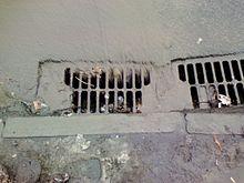 Image courtesy of Wikipedia: http://en.wikipedia.org/wiki/File:Drain_runoff_in_Kharkiv.jpg